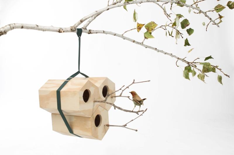 utoopic neighbirds