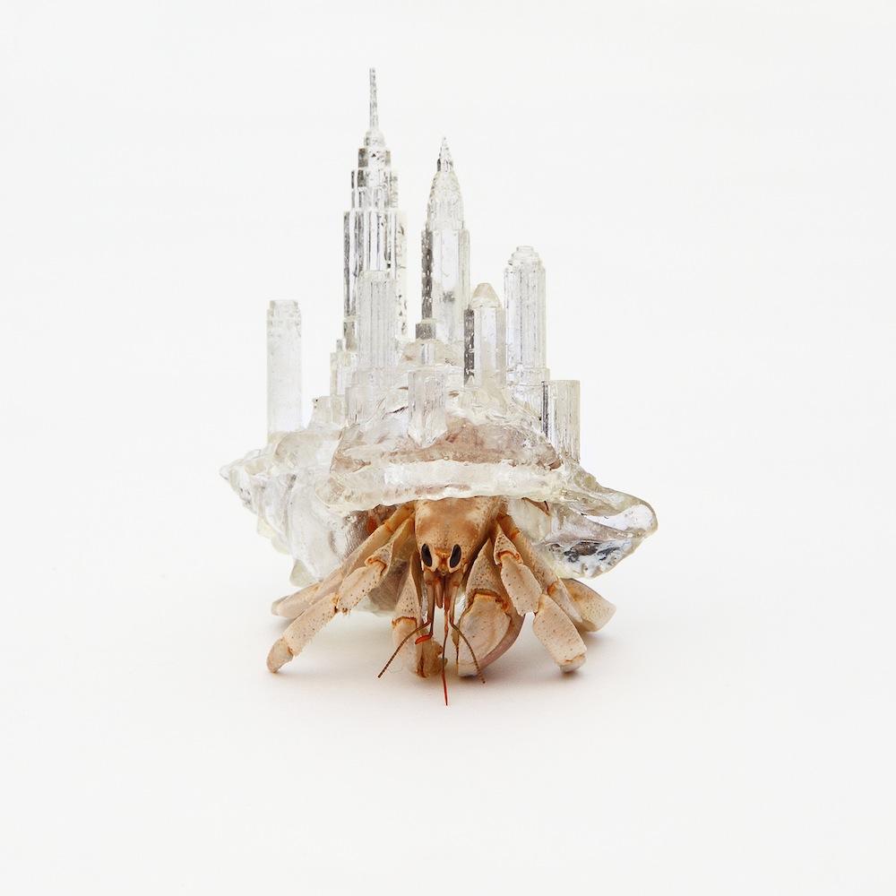 Aki Inomata - Cosmopolitan Shells