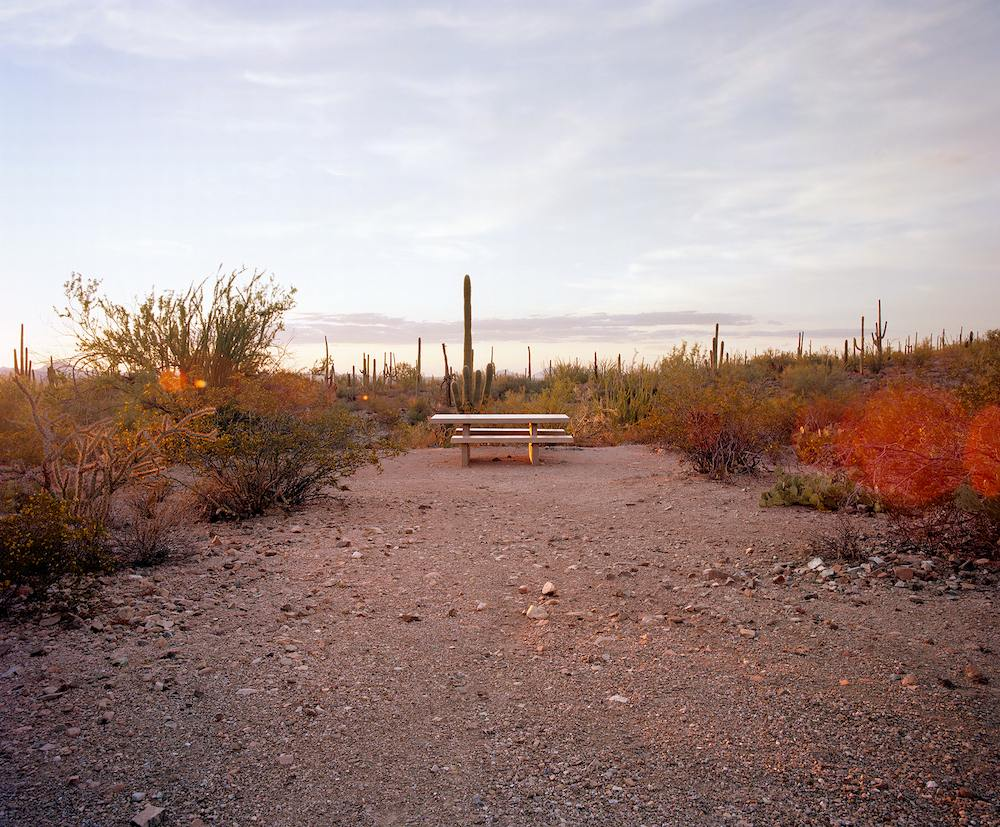 "Saguaro National Park, Arizona: ""The Last Stop"". Photo by Ryann Ford"