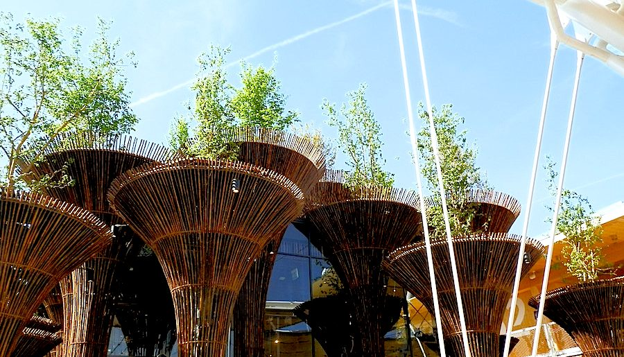 Vietnam Pavilion at Expo Milan 2015 - Photo by Enrico Zilli.