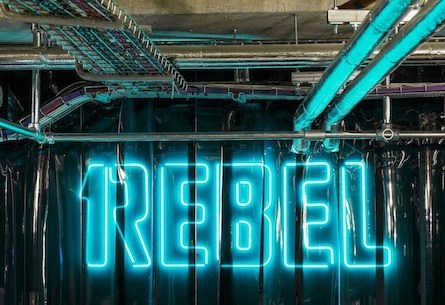 1Rebel: Nightout at the Gym