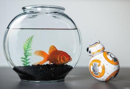 Inside Star Wars droid BB-8