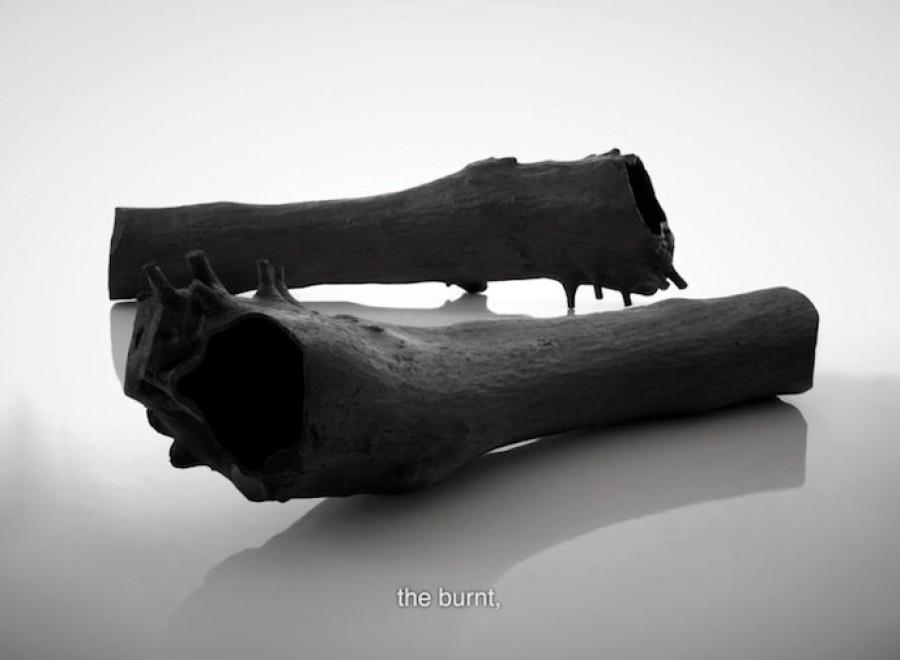 MO16 Wild – Burnt