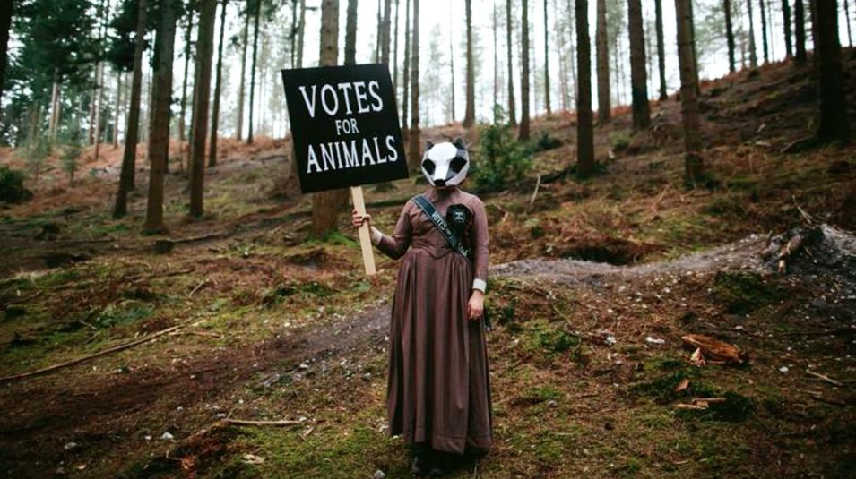 Frame from M&O video Wild - Campaingns votes for animal parliament, masks by STEVE WINTERCROFT @Richard SKINS.