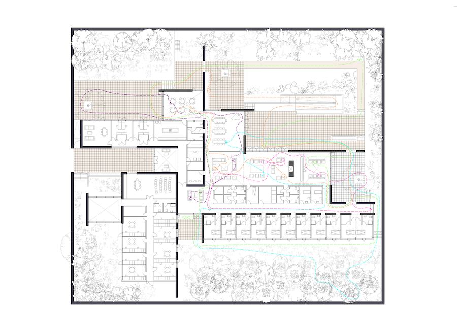 Alzheimer's Respite Centre Plan with Wandering Routes © Níall McLaughlin Architects, 2009