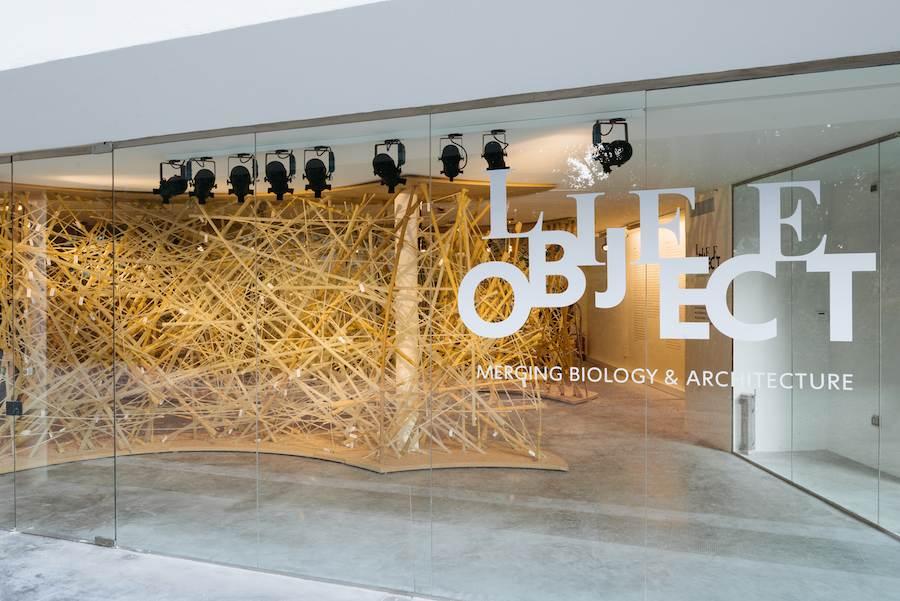 Life Object exhibition at Israel Pavilion - Photo by Dacian Groza, courtesy of Israel Pavilion.