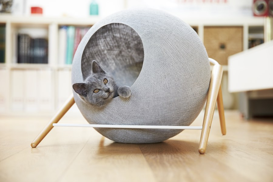 Cat-friendly designs - BALL by Meyou-Paris. Courtesy of Meyou-Paris.