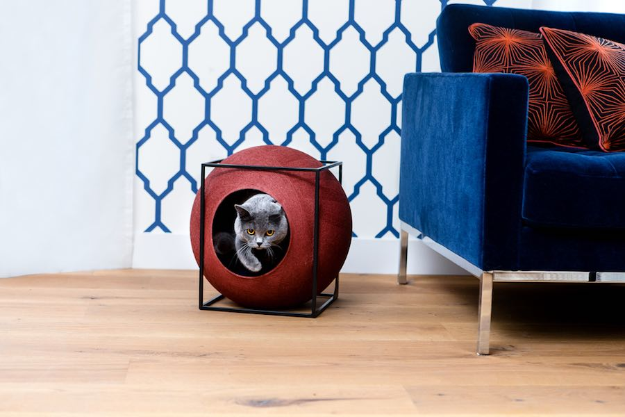 Cat-friendly designs - CUBE by Meyou-Paris. Courtesy of Meyou-Paris.