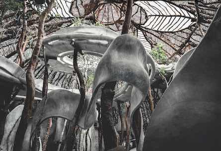 Jungle Art Center