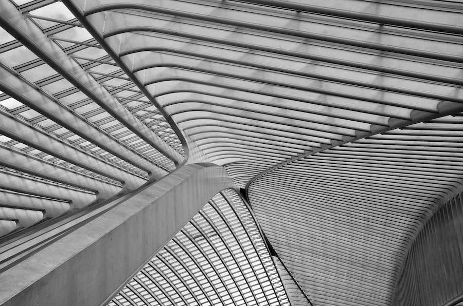 Architectural Photography Awards 2018 - Int - The ceiling of Liege-Guillemins station in Belgium by Santiago Calatrava. © Suraj Garg