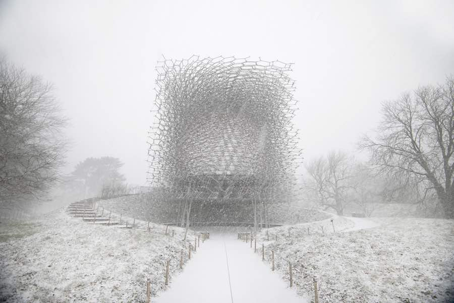 Architectural Photography Awards 2018 - SoP - The Hive at the Royal Botanic Gardens, Kew, UK, during winter by Wolfgang Buttress. © Jeff Eden.