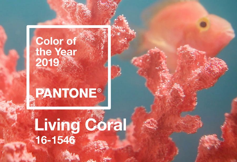 Living Coral: PANTONE Colour of the Year 2019. ©Pantone.