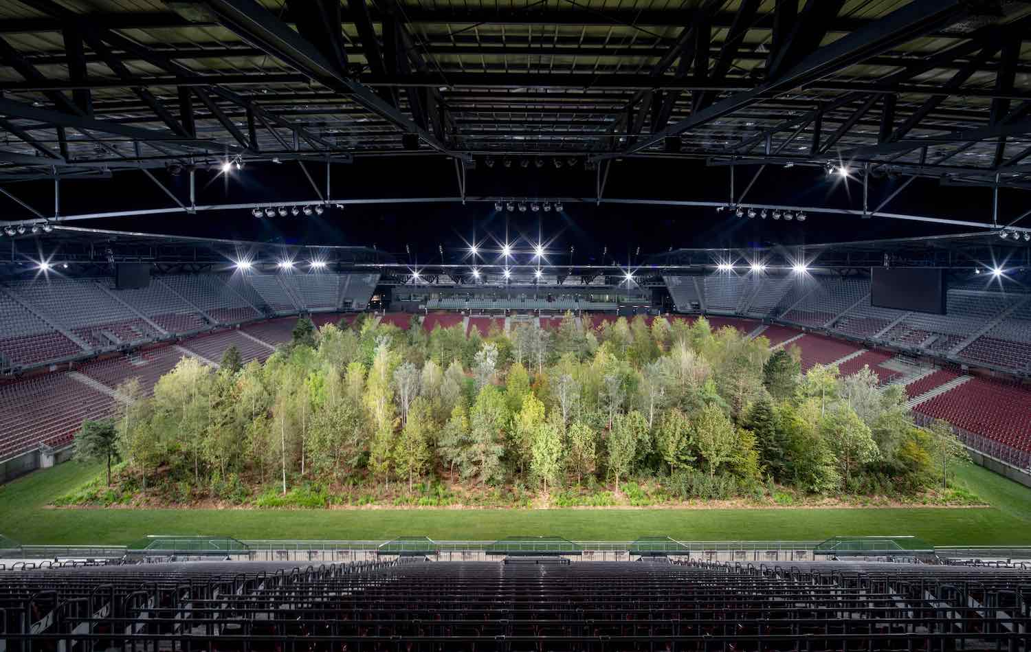 FOR FOREST by Klaus Littman - Photo by Gerhard Maurer, courtesy of ©For Forest