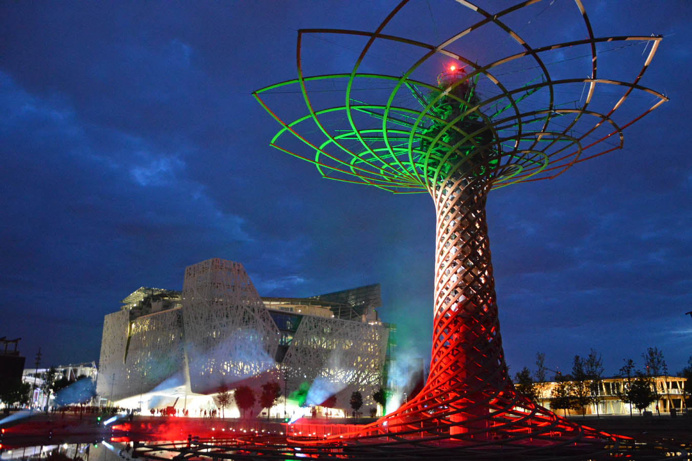 Tree of Life shines with the Italian Flag