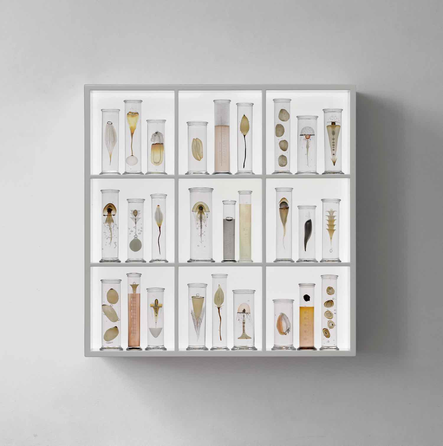 Steffen Damm's Cabinet for Collect 2020 - Courtesy of Joanna Bird.