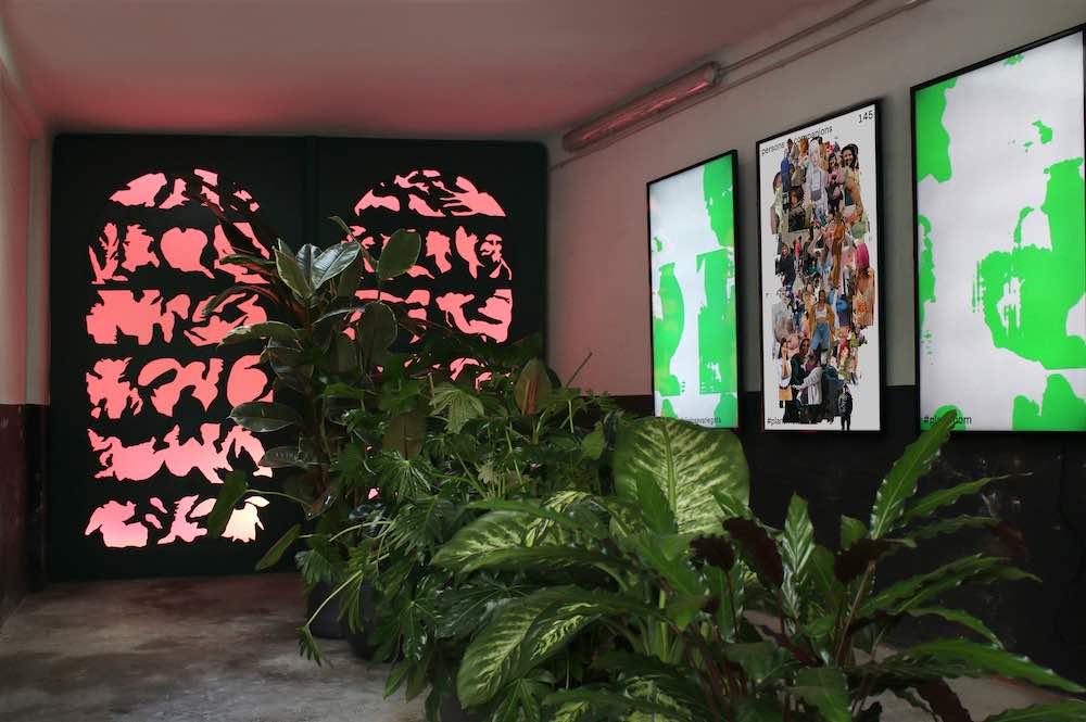 PLANT FEVER exhibition @ CID Grand Hornu. BOTANICA VARIEGATA by Sjoerd ter Borg - Photo by Boratto and Mouravas.