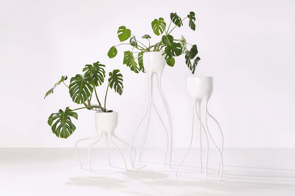 PLANT FEVER exhibition @ CID Grand Hornu. MONSTERA collection by Tim van der Weerd - Photo by Rene van der Hulst.