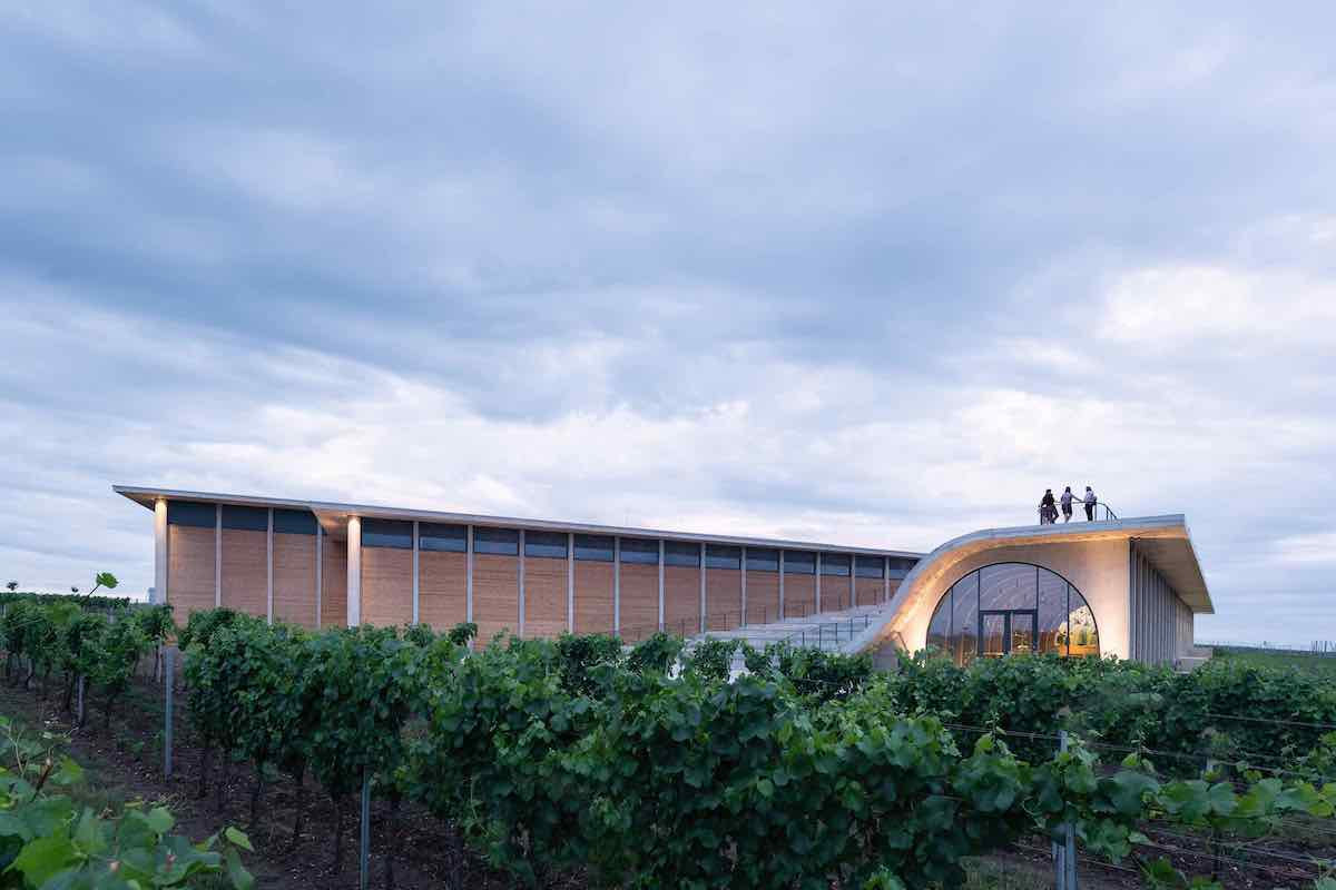 Lahofer winery by Chybik + Kristof - Photo by Chybik + Kristof.