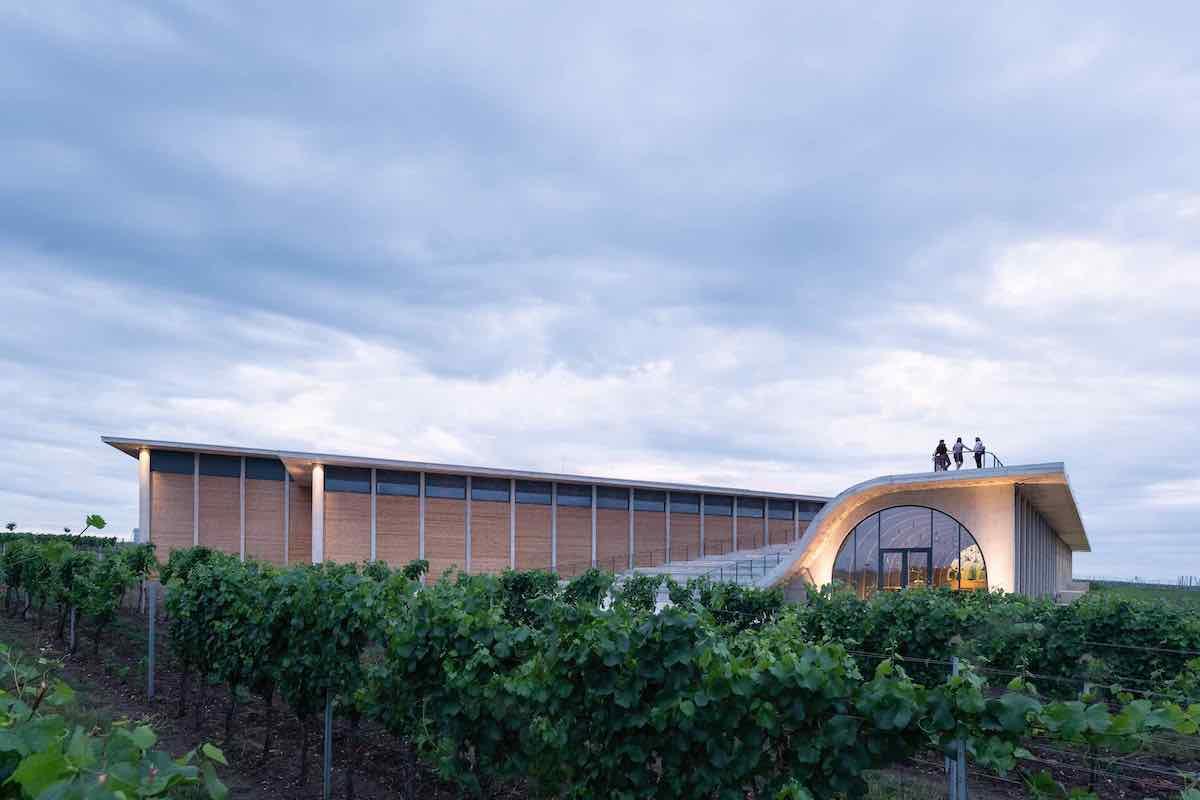 Lahofer winery by Chybik + Kristof - Photo by Chybik + Kristof.