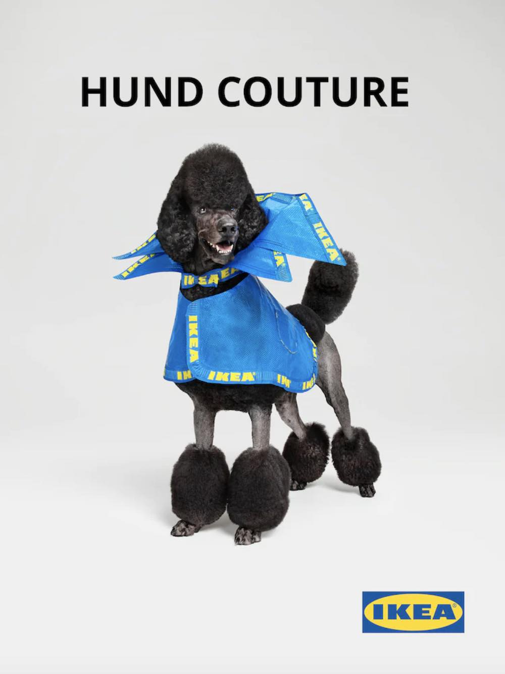 IKEA's Hund Couture - April's Fool.
