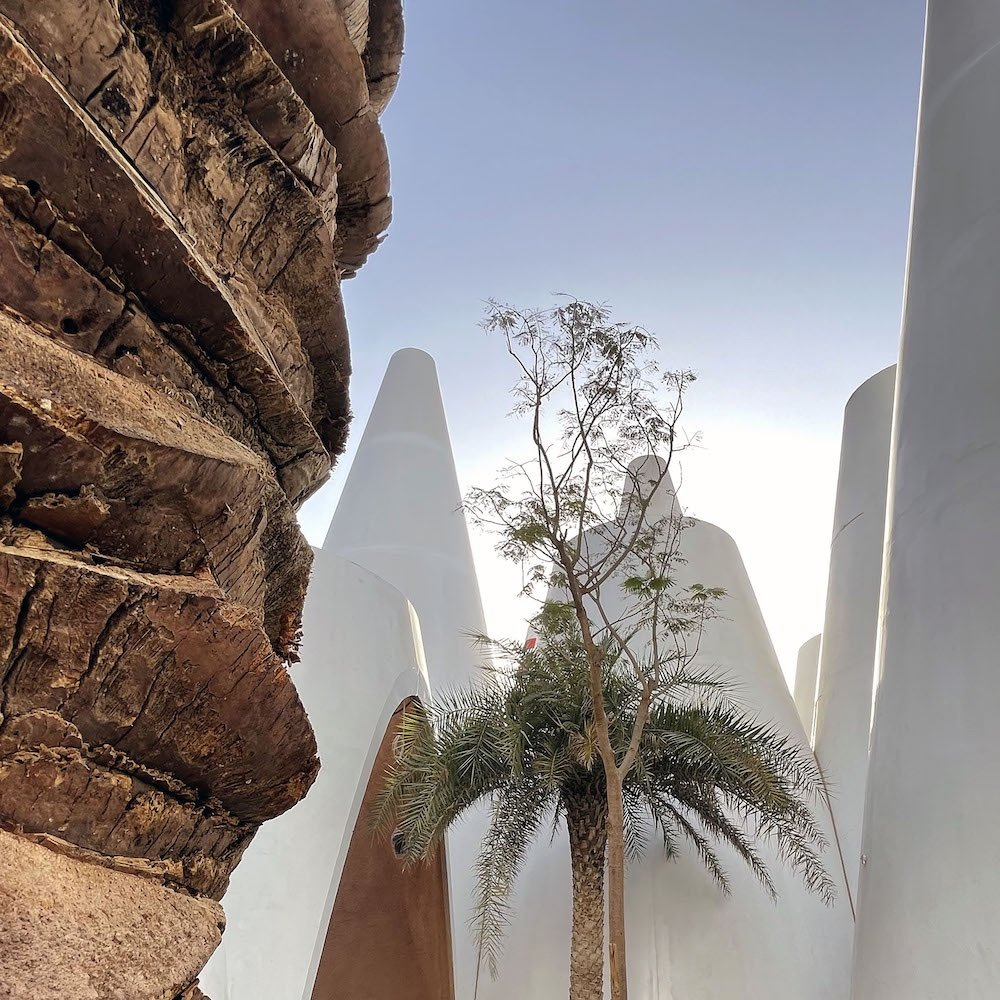 Austria Pavilion at Expo 2020 Dubai - Photo by © Andreas Keller Fotografie, courtesy of Querkraft.