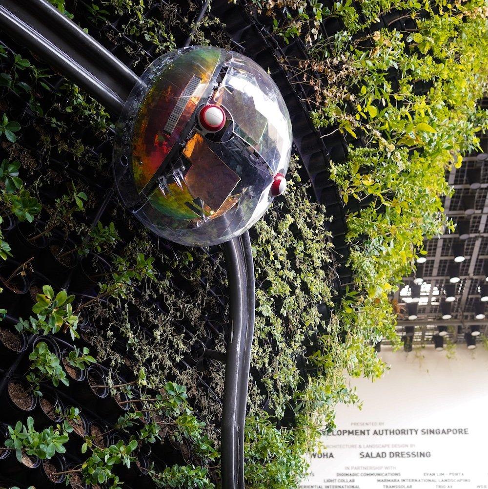 Singapore Pavilion @ Dubai Expo - Climbing Robot - Image credit to Quentin Sim.