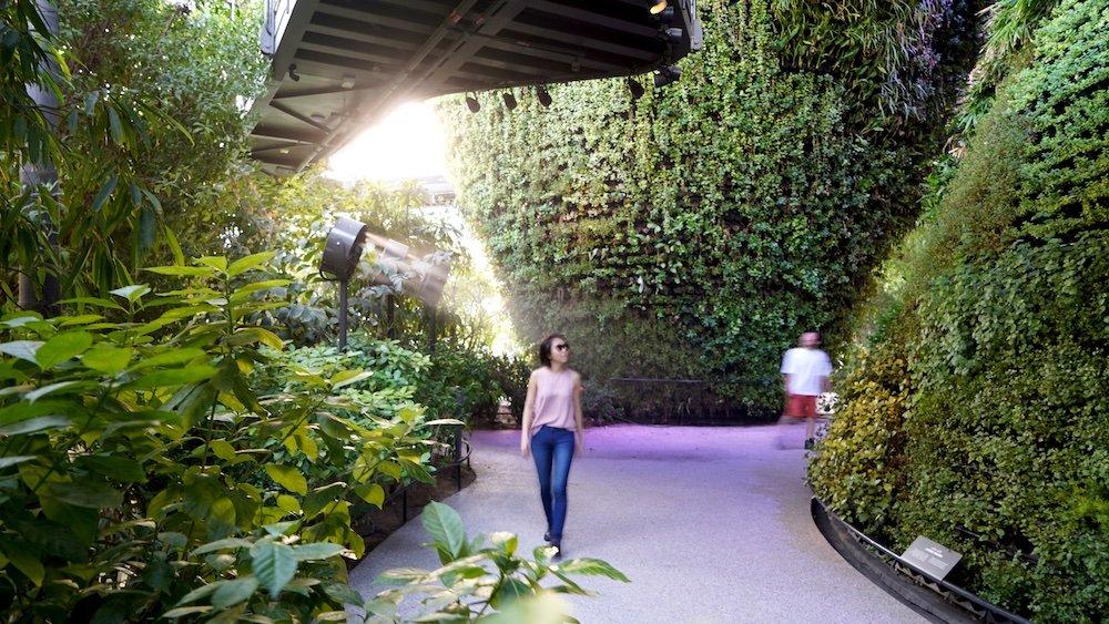 Singapore Pavilion @ Dubai Expo - Ground Garden - © Singapore Pavilion