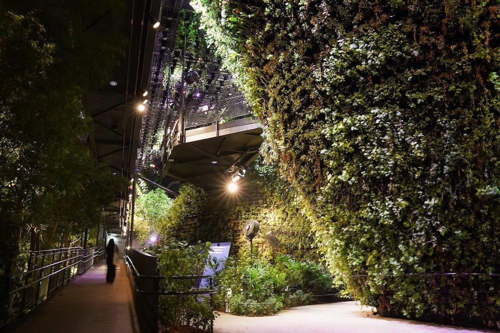 Singapore Pavilion @ Dubai Expo - Ground Garden - Photo by Quentin Sim.