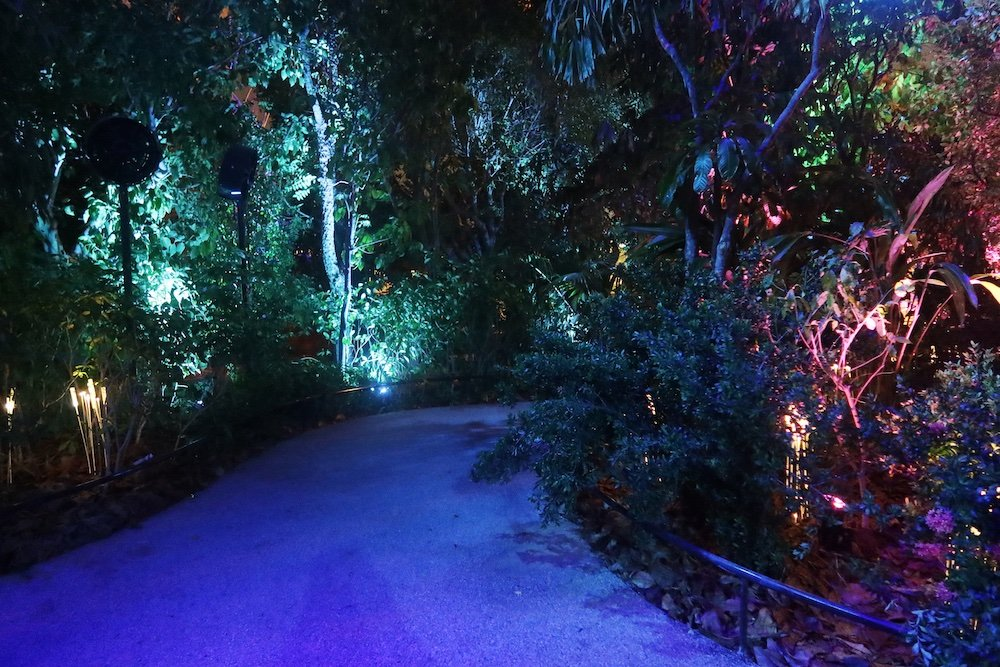 Singapore Pavilion @ Dubai Expo - Ground Garden with firefly lights. - Photo by Light Collab
