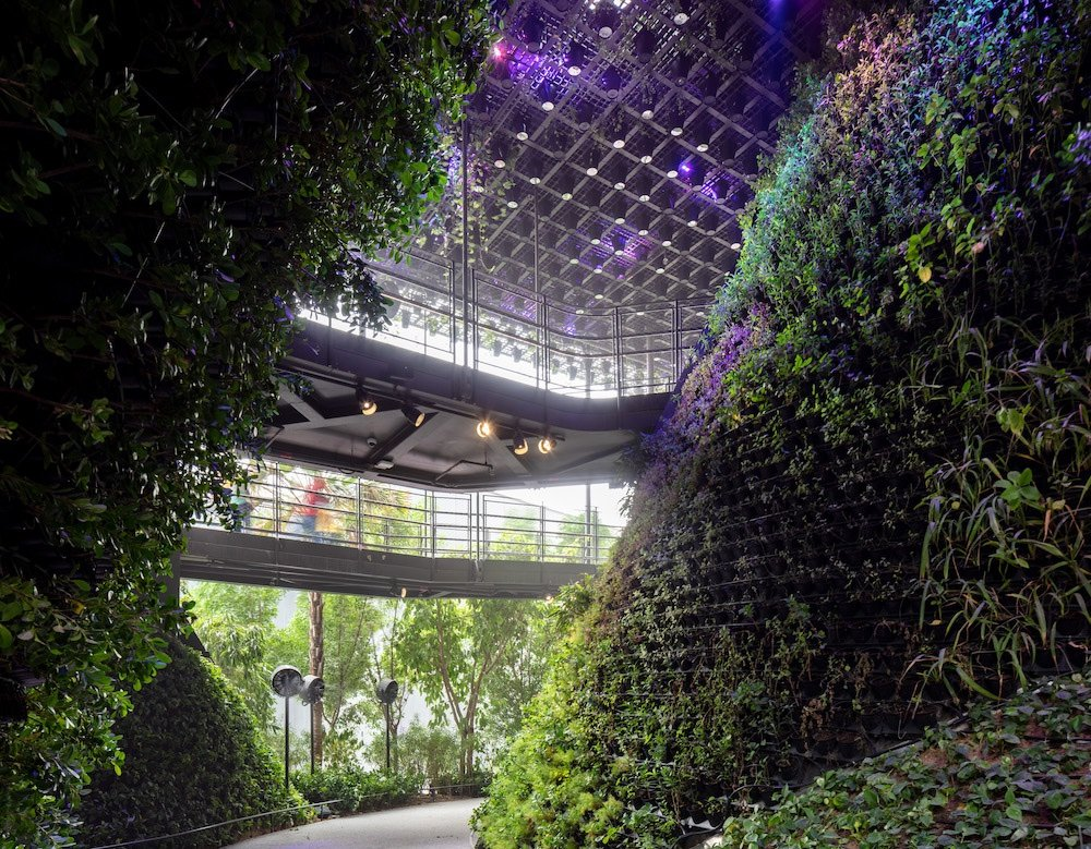 Singapore Pavilion @ Dubai Expo - Multi-layered greenery - © Singapore Pavilion, Expo 2020 Dubai