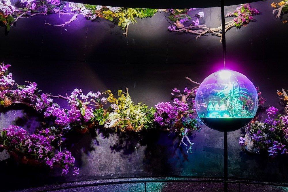 Singapore Pavilion @ Dubai Expo - Flower Cone - Photo by Quentin Sim.